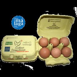 Estuche de 12 Huevos