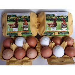 Huevos Ecológicon Campo Alcor