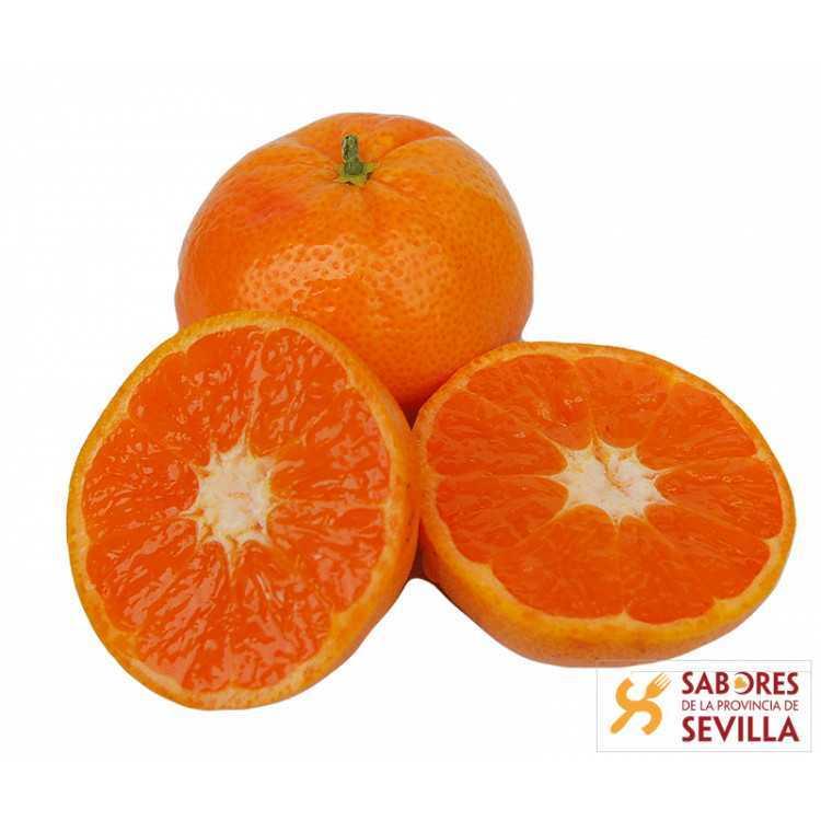 Mandarinas Tango 1 Kg